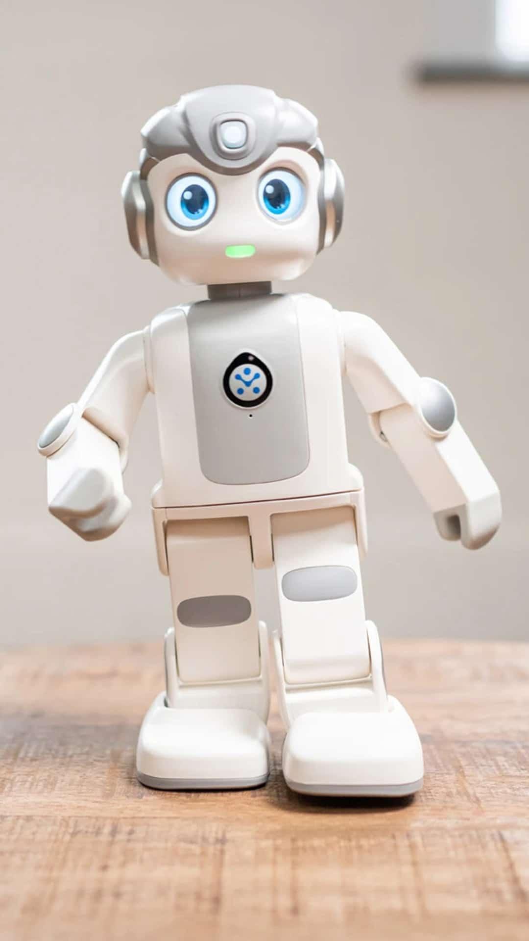 Robot Robin robotfriends